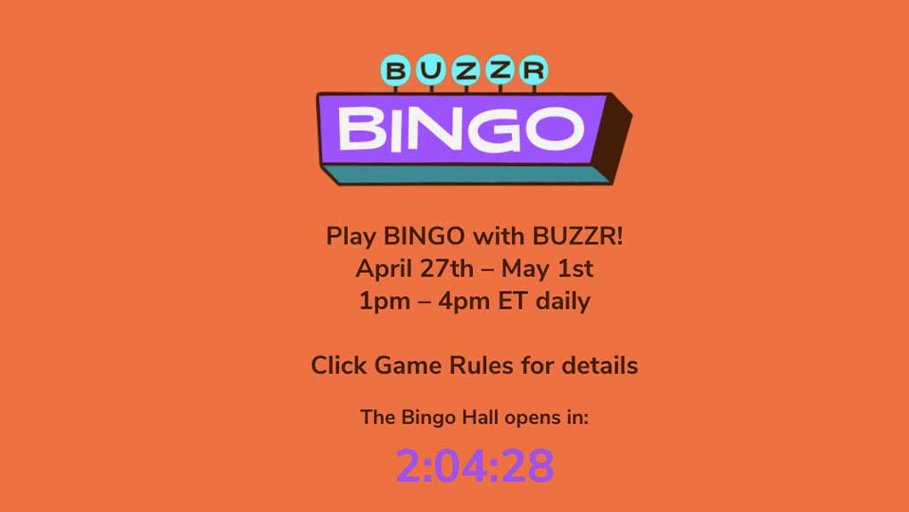 landing page with CTA and countdown to next BINGO game